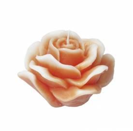 vela-rosa-naranja-M-vela-decoración