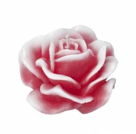 vela-rosa-roja-M-vela-decoración